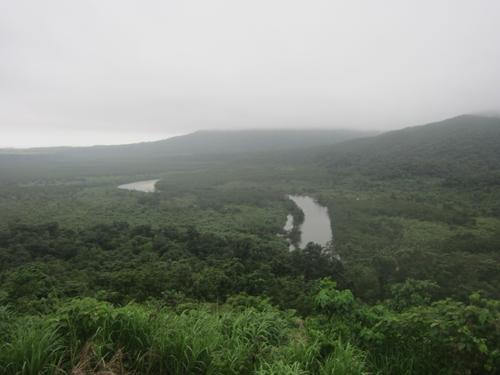 「沖縄の西表島~亜熱帯のジャングルを横断~」