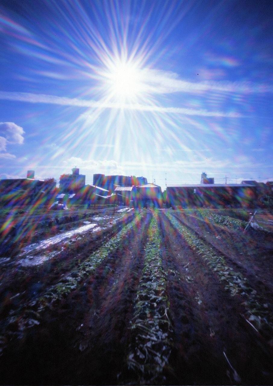 ピンホールカメラで撮影した太陽(2)
