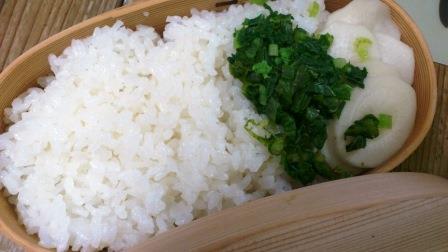大根の葉の塩ゆでと大根の糠漬けのシンプル弁当