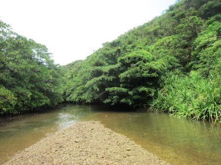 沖縄県・西表島にて(1)
